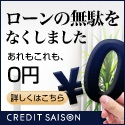 CREDIT SAISON MONEY CARD
